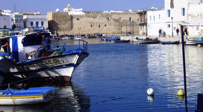 Séminaire : Enjeux socio-environnementaux du lac de Bizerte