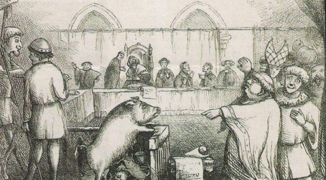 Webinaire du RUCHE : Histoire des animaux